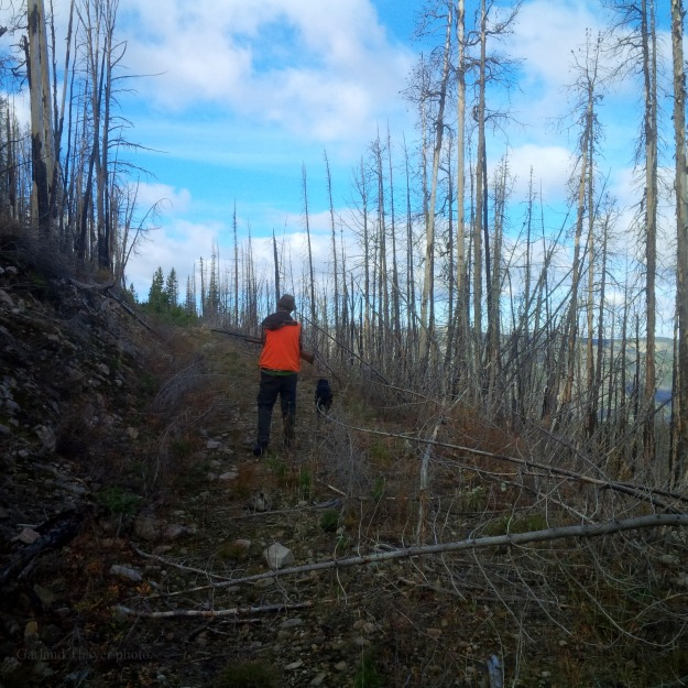 rock creek grouse hunting