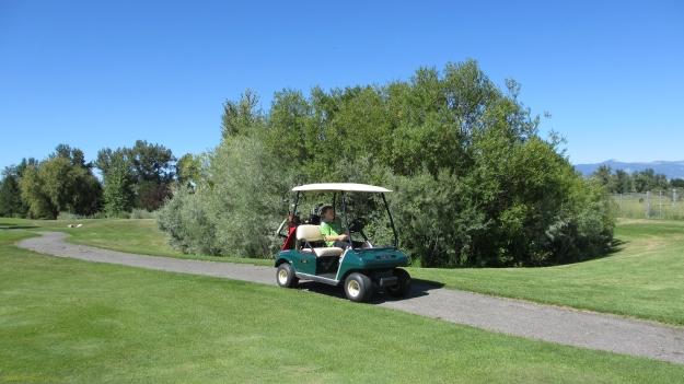 MSO golf