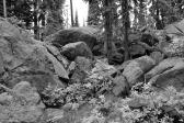 Skookum rocks