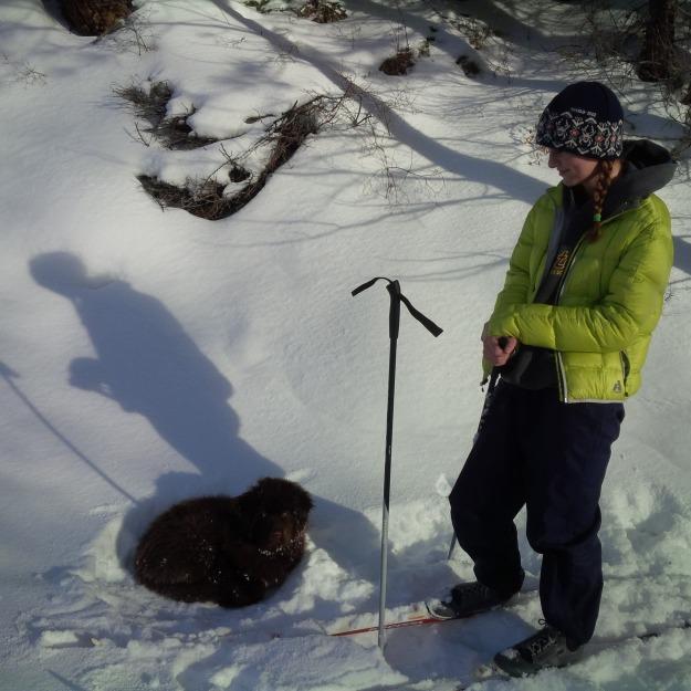 ET & Ajax XC Skiing